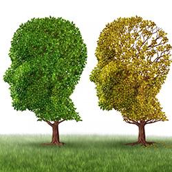 An Elusive Diagnosis – Alzheimer's (AD)
